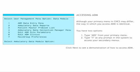 ADP Course Interface